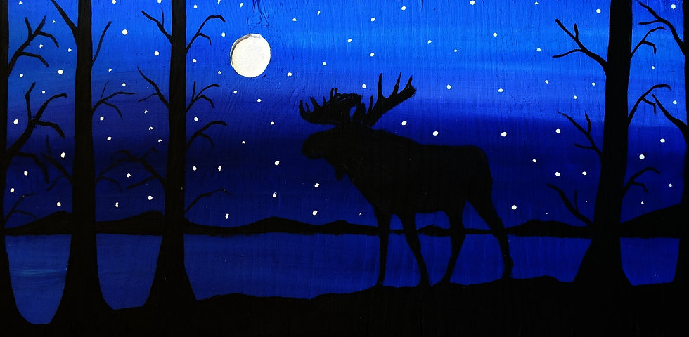 Silhouette Moose in a starry night
