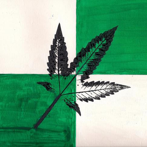 Libertarian Legalization