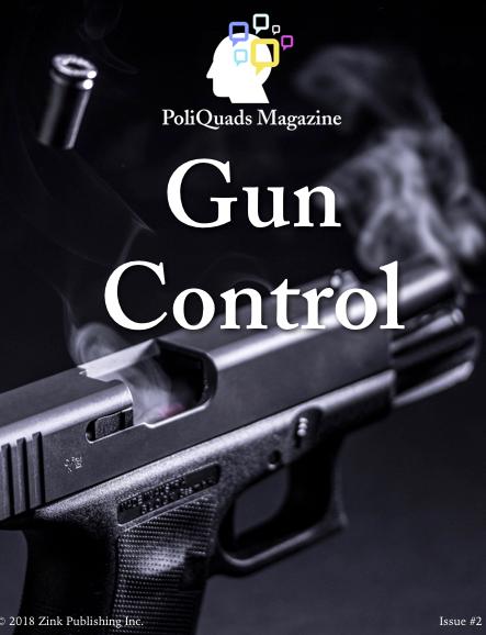 Gun Control ePub
