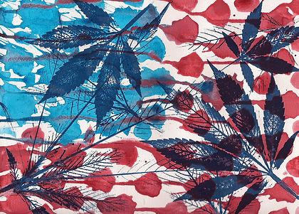 Lizzy Weed 3.jpg