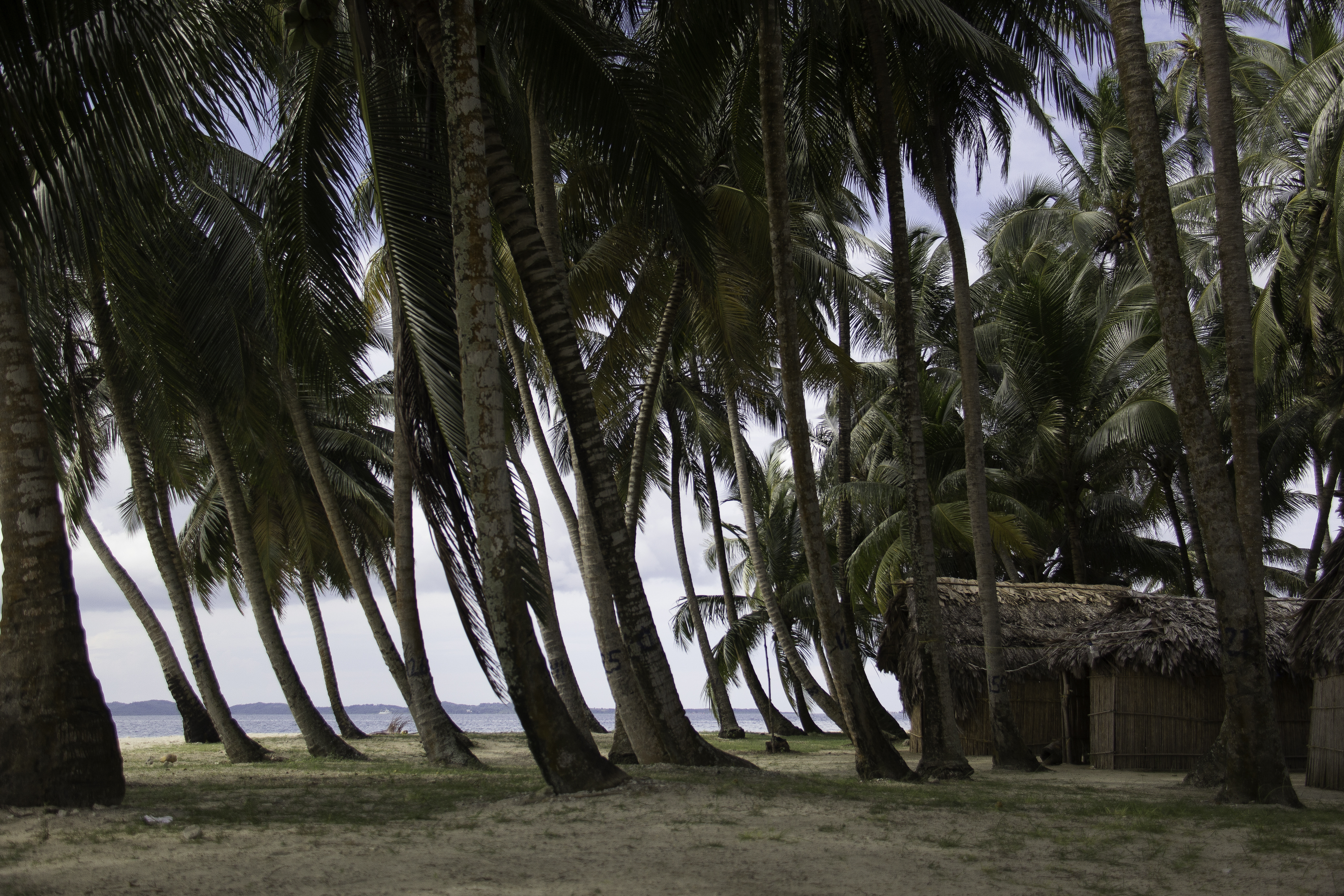 Ilha Amora / Amora island, San Blas