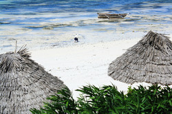 Praia de Zanzibar / Zanzibar beach