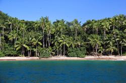 Ilha no Pacífico / Pacific island