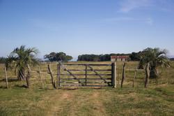 Estância, Uruguai / Farm, Uruguay