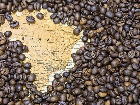 Brezilya'dan Ürün Satın Alın