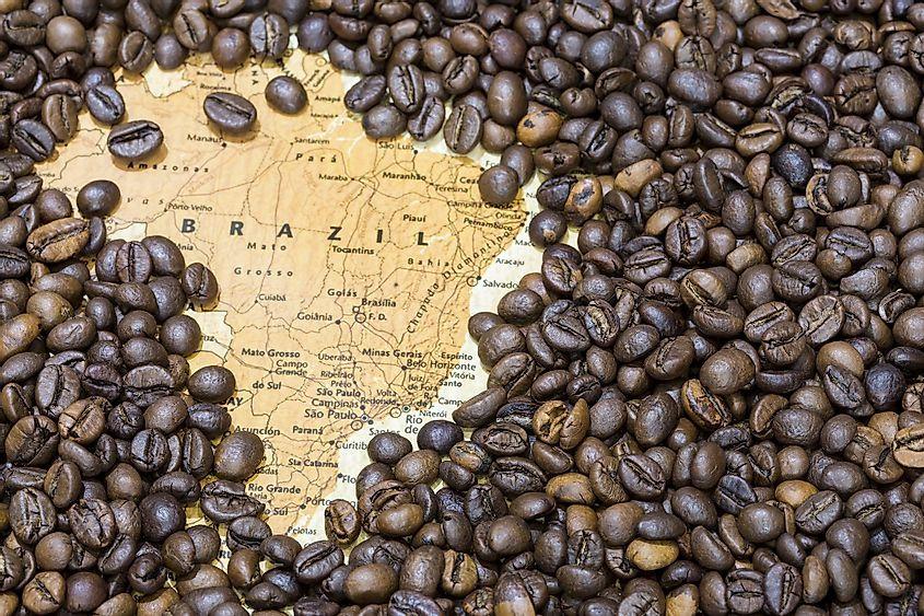 Brezilya Kahvesi