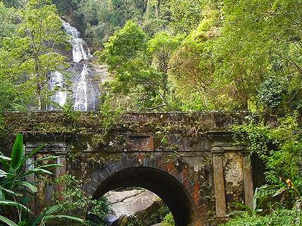 Tijuca Milli Parkı Rio de Janeiro