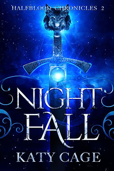 night fall cover.jpg