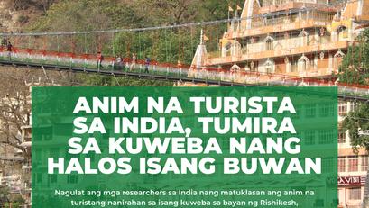 Anim na Turista sa India, Tumira sa Kuweba Nang Halos Isang Buwan