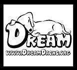 DreamDachsund.jpg