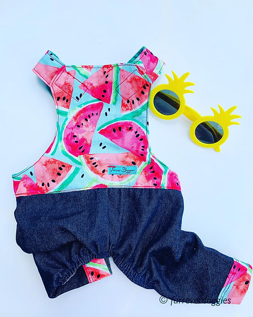 Watermelon Summer Overall