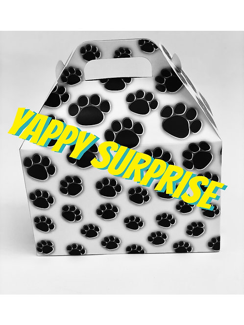 Yappy Surprise