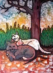 Dog-&-Cat
