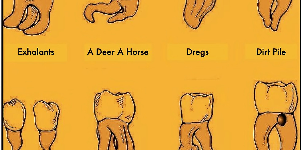 Exhalants, a Deer a Horse (NY), Dredgs, Dirt Pile