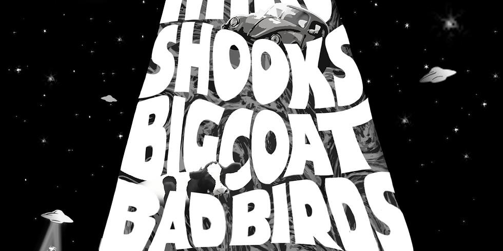 MIRO, Shooks, Big Coat, Bad Birds