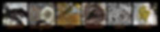 Screen Shot 2020-05-22 at 9.25.07 PM.png