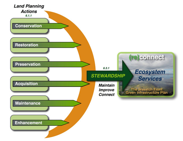 WFGI - Land Planning Actions-STEWARDSHIP.jpg
