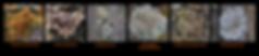 Screen Shot 2020-05-22 at 9.25.22 PM.png