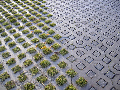 walkway-ideas-for-front-of-house-paving-