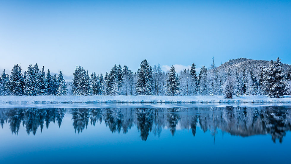 Winter Reflections on the Snake River