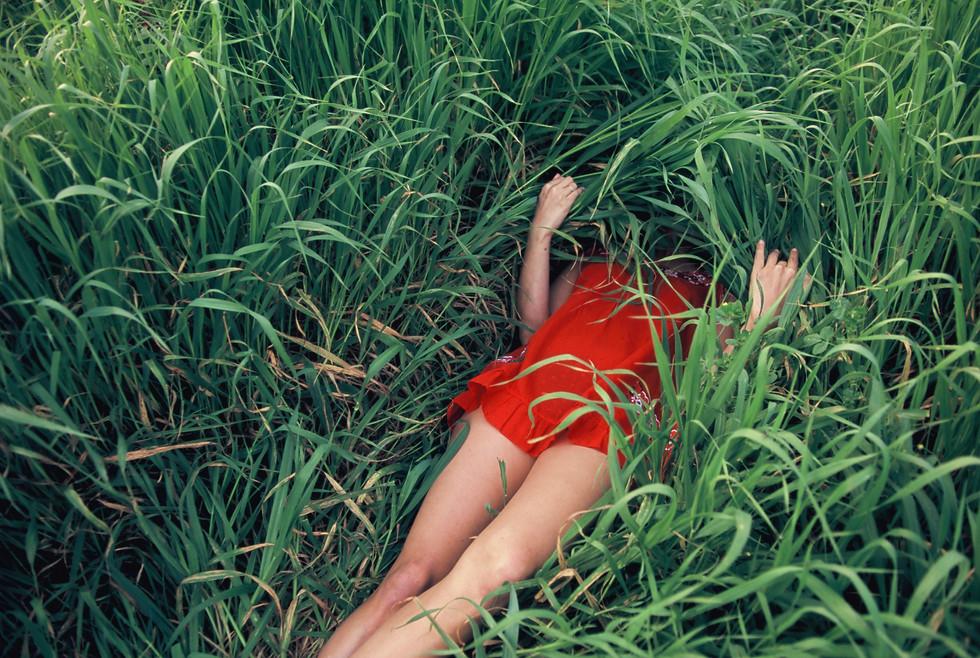 7Linoy lying behind green cover.jpg