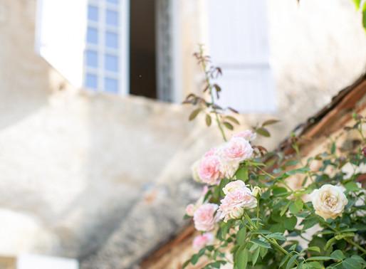 A French Tropical Chic Destination Wedding