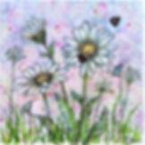 18P-15 Lady Bug Daisies, July 3, 2018.jp