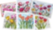 Assorted Card Promo Image Apr 2020.jpg