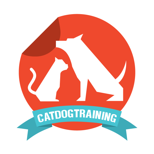 CatDog training