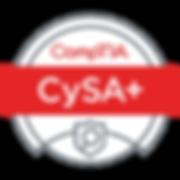 cysa2.png