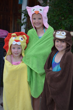 A Lion, and Owl, and a Monkey