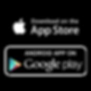 app store google logo.PNG