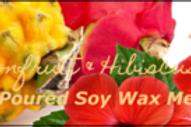Dragonfruit & Hibiscus Wax Melt