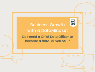 Do I need a Chief Data Officer to become a data-driven SME?
