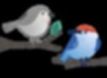 birds-01-01.png