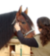 Palpación de la articulación temporomandibular