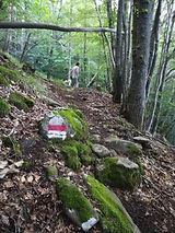 Percorsi trekking storici, percorsi Montagna Pistoiese