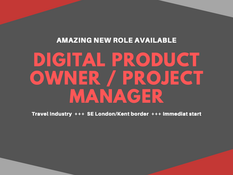 NEW ROLE: Digital Product Owner/Project Manager