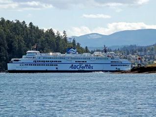 BC Ferries惊传乘客落海,纳奈莫渡轮误点