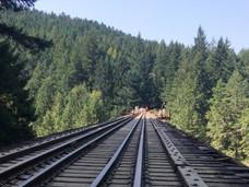 温岛著名铁路大桥或将关闭