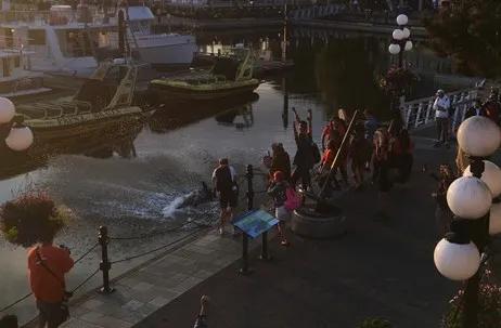 抗议原住民迫害议题,维市著名雕像国庆日被毁