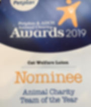 Petplan Nomination Cat Welfare Luton