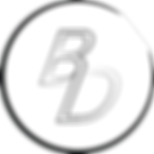 Logo Portfolio B.png