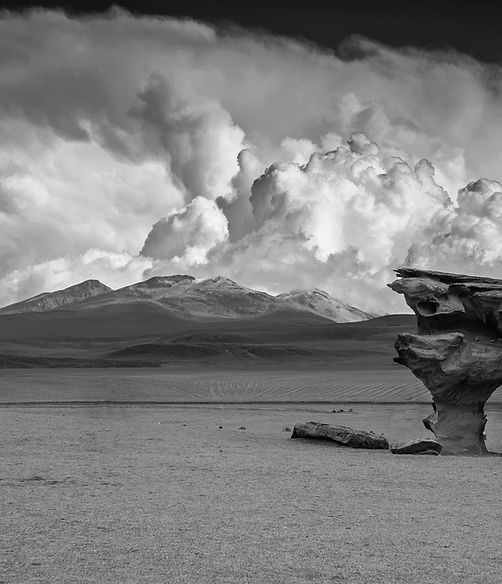 Storm clouds brew above mountains and desert with a stone tree in the foreground of this black and white photo.