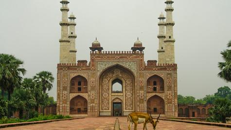 Akbar's Friend