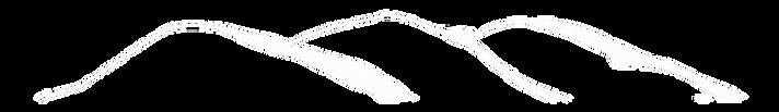 Logo_good trans White.png