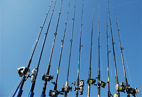 Holidays-In-Eastbourne-Fishing