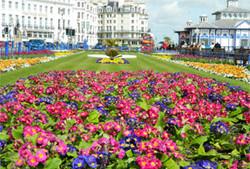 Eastbourne-Carpet-Gardens