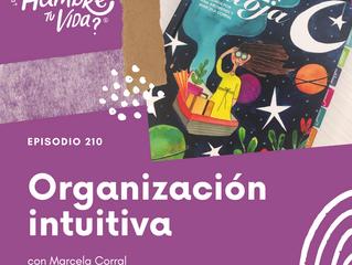 E210: Organización intuitiva