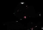 logo-kopf_schrift_pink_kreis_200px.png